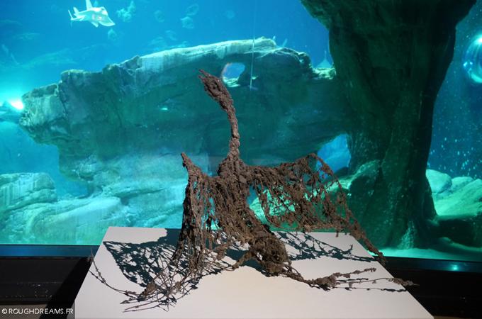LionelSabatté-AquariumdeParis-08